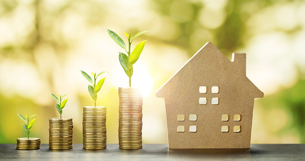 Chedid Property - How to spot a great investment opportunity